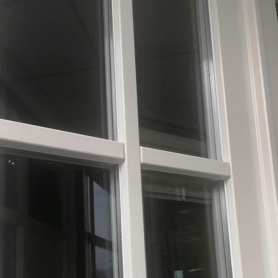 Roedes op het raam